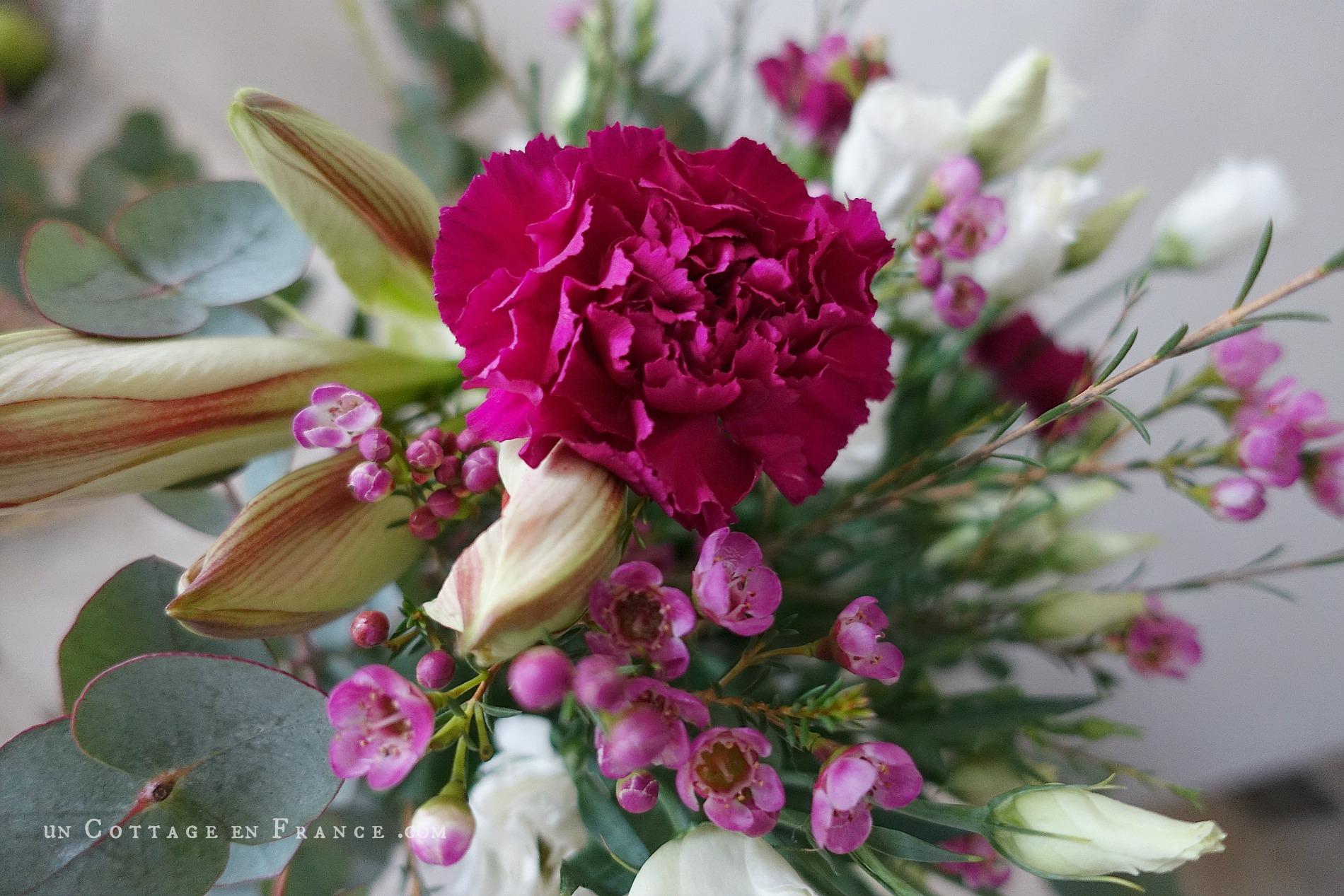 Le bouquet de la Saint valentin, oeillets roses 3