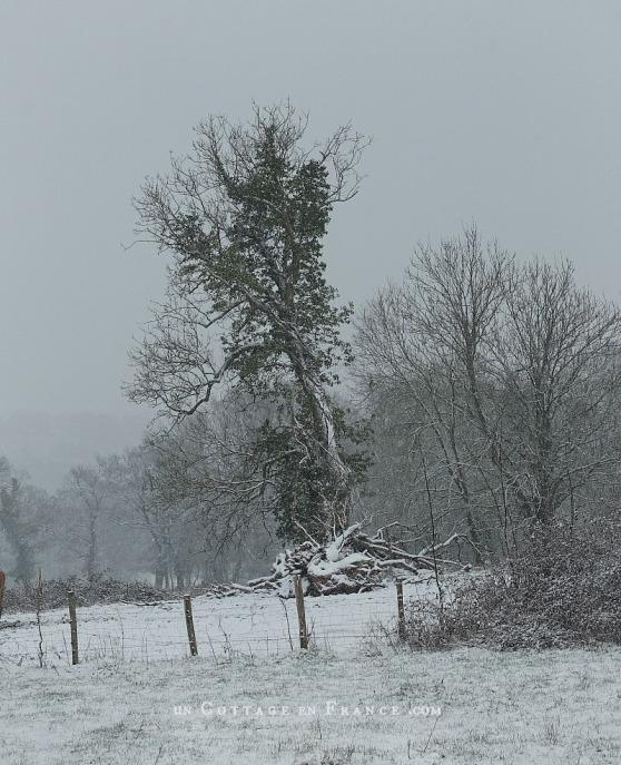 Paysage Haut Limousin février 2018