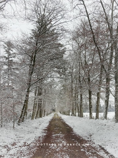 Paysage haut limousin hiver 2018, blog shabby chic 6