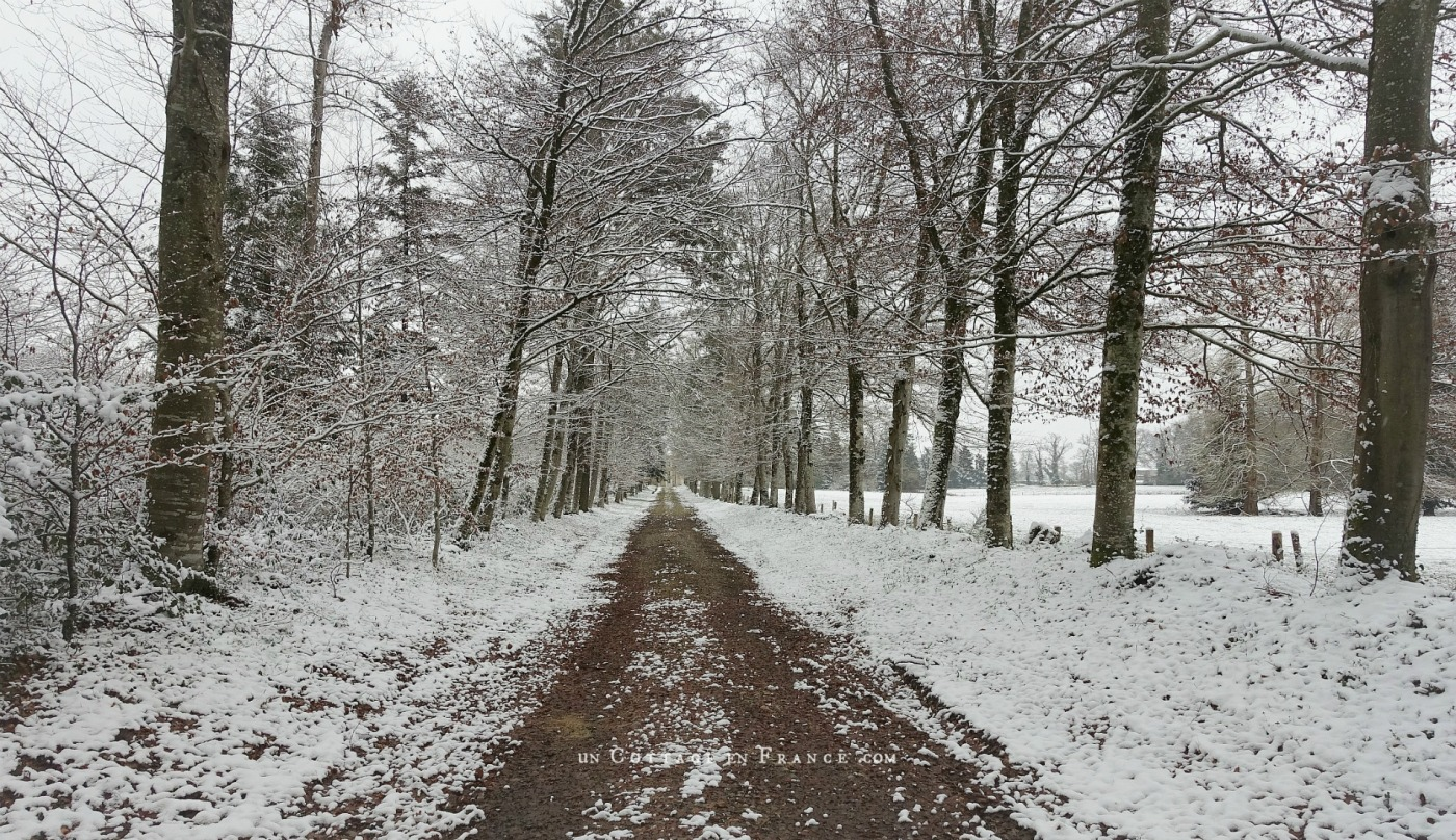 Paysage haut limousin hiver 2018, blog shabby chic2
