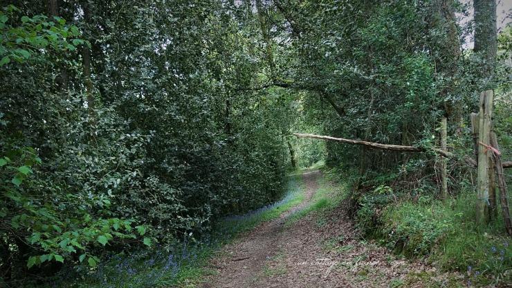 Chemin Haut Limousin, blog campagne chic