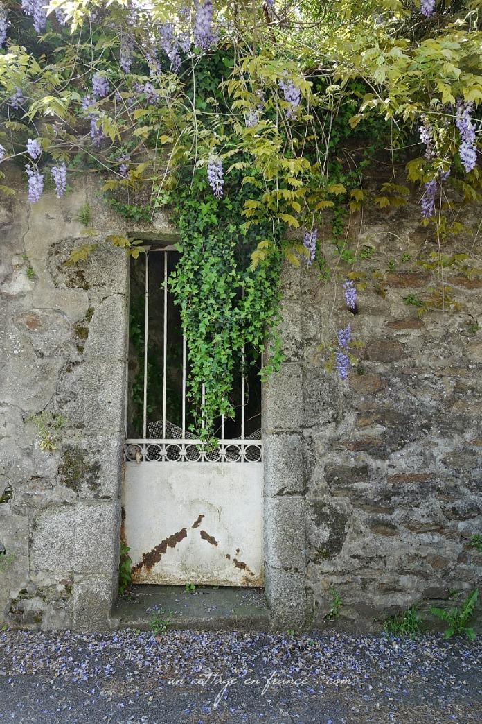 Une ancienne porte blanche sous la glycine, blog cottage