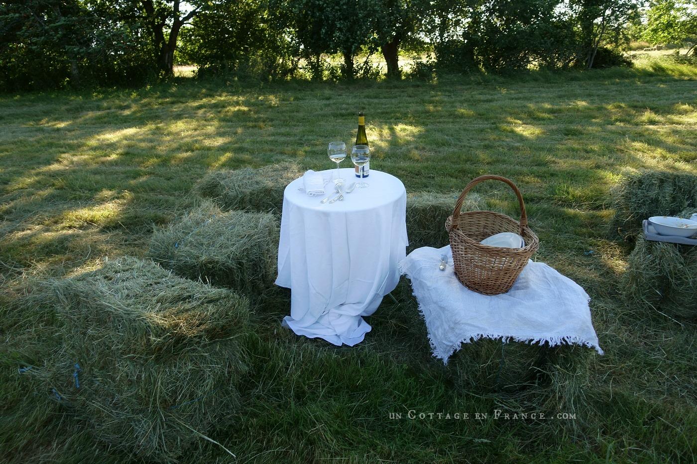 Un verre dans le champ pour célébrer l'été blog country chic 6