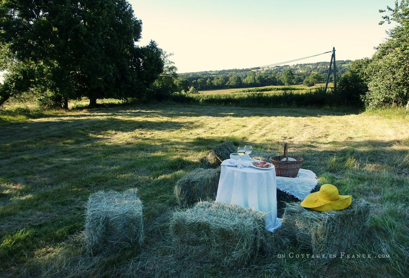 Un verre dans le champ pour célébrer l'été blog country chic 8