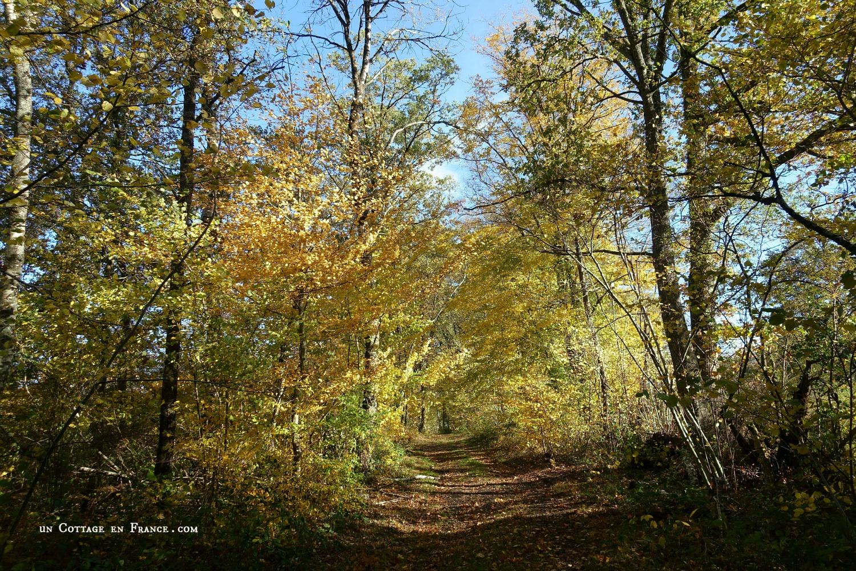 Novembre à Blanzac, un Cottage en France 8