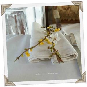 Déjeuner de Paques un Cottage en France Oeufs mimosas 11